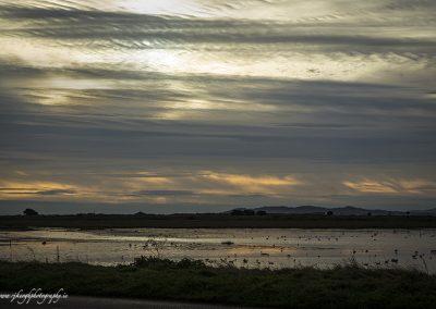 Clontarf Evening Sky