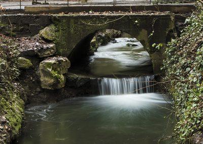 St Anne's Park, Raheny
