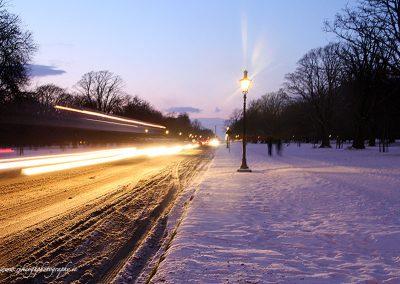 Phoenix Park in the Snow