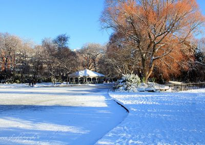 St. Stephen's Green in the Snow