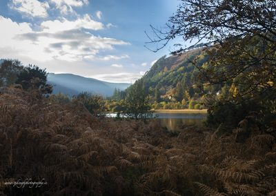 Autumn in Glendalough